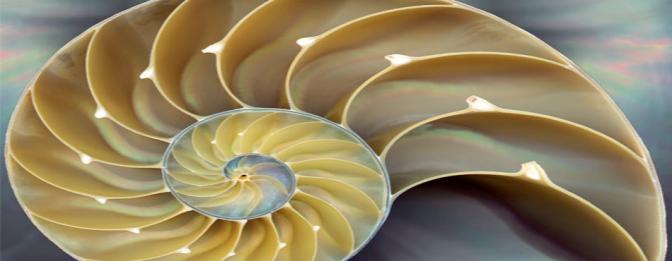 Análise Matemática – Introdução a Análise Vectorial (Post #3)